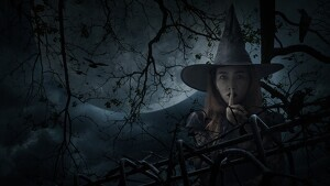 Enjoy these witch quotes we have listed for you.