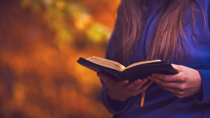 Read these Bible quotes for those who have faith and need a guide.