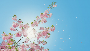 Read these spring quotes to remind you how great this season is.