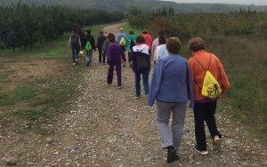 Caminada per la Salut Mental, diumenge 13 de novembre a Lleida
