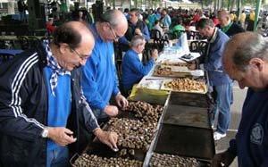 Dia 7 d'octubre: XXXI Aplequet de Tardor a Lleida