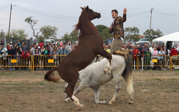 La 13a Fira del Caçador de Tàrrega renova l'afluència multitudinària de públic amb 19.000 visitants
