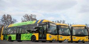 Imatge d'arxiu dels autobusos de Lleida