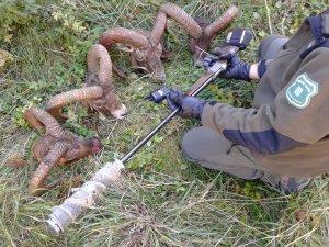 Imatge del material trobat pels Agents Rurals