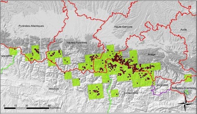 Mapa de distribució d'ossos als Pirineus