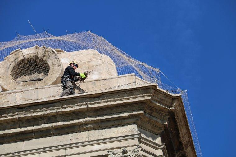 Pla tancat d'un dels operaris, retirant un dels nius perillosos a la Catedral de Lleida