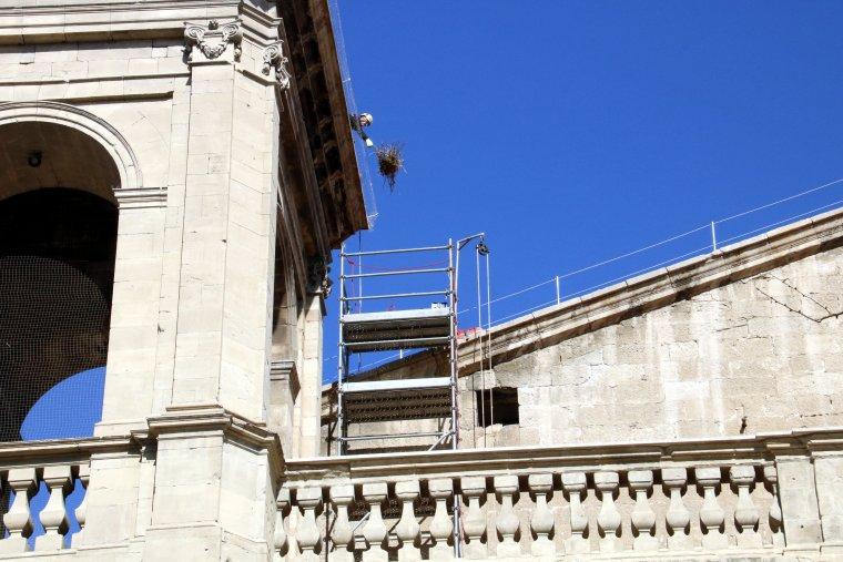 Un dels operaris, retirant un dels nius perillosos a la Catedral de Lleida