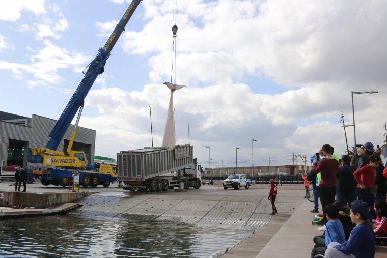 Una grua de gran tonatge introdueix a un camió el cos de la balena morta trobada a Montgat i que s'ha remolcat fins al port de Badalona