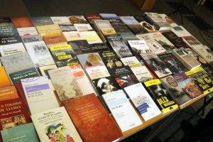 Alguns dels llibres publicats per Pagès Editors i Editorial Milenio