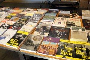 Imatge d'alguns dels llibres publicats per Pagès Editors i Editorial Milenio
