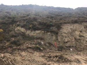 La zona on s'ha trobat l'artefacte