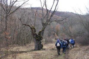 Pla general del grup de voluntaris que recuperen una finca al Parc Natural de l'Alt Pirineu
