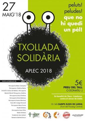 Cartell de la txollada solidària