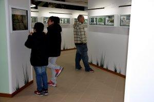 Un grup de persones visitant una de les sales del nou edifici del Museu de les Papallones de Catalunya