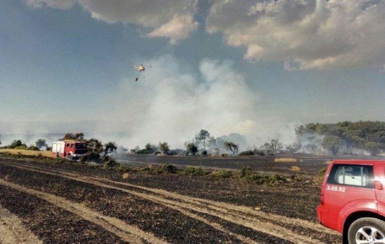 El foc s'ha iniciat prop de la carretera C-14.