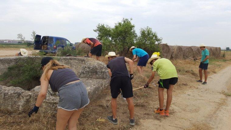 Els voluntaris treballant a Linyola