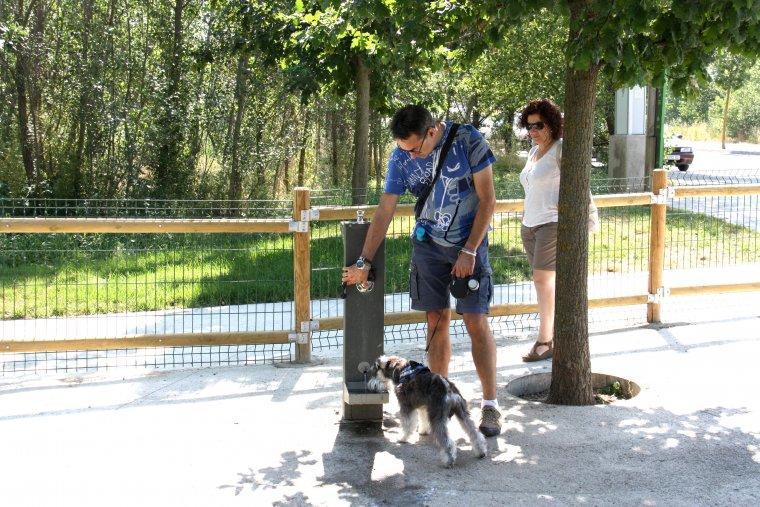 Pla general d'un gos i els seus propietaris a les instal·lacions del Parc Caní de l'Horta del Valira