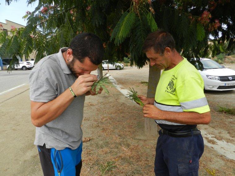 Imatge de dos tècnics fent un control de plagues
