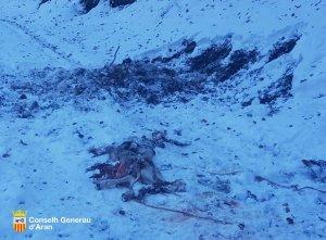 Imatge de l'atac de Goiat