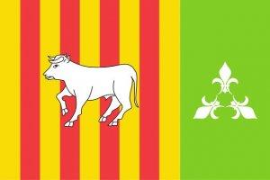 Proposta 2 per convertir-se en la nova bandera de les Borges Blanques.