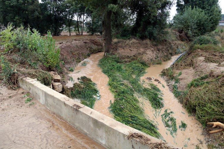 El riu Sió al seu pas per les Oluges