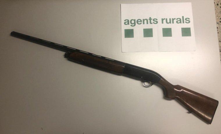 Imatge de l'arma