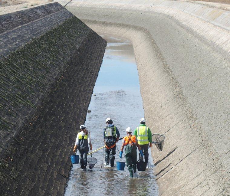 Imatge del buidatge del canal