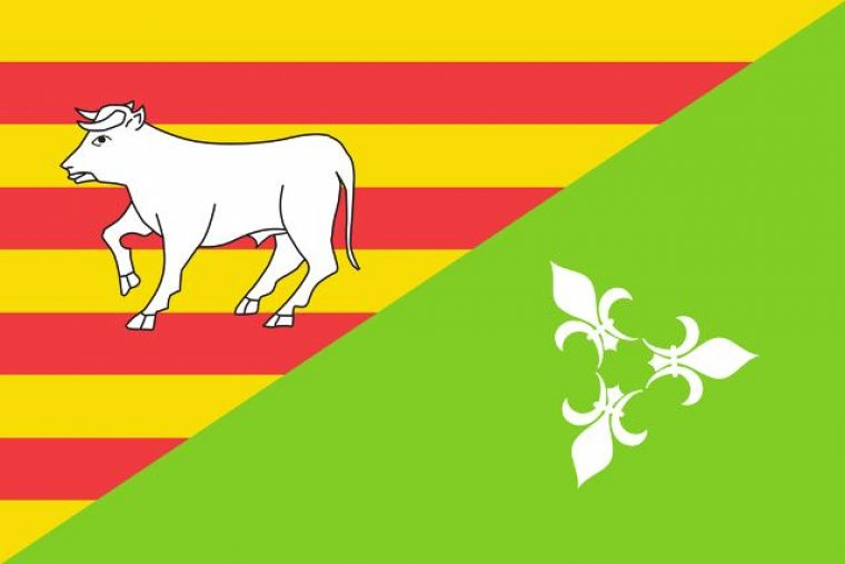 Proposta 3 per convertir-se en la nova bandera de les Borges Blanques.