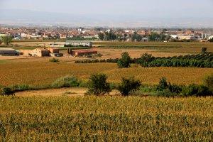 Pla general de finques del terme de Bell-lloc d'Urgell