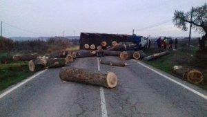 El camió transportava troncs