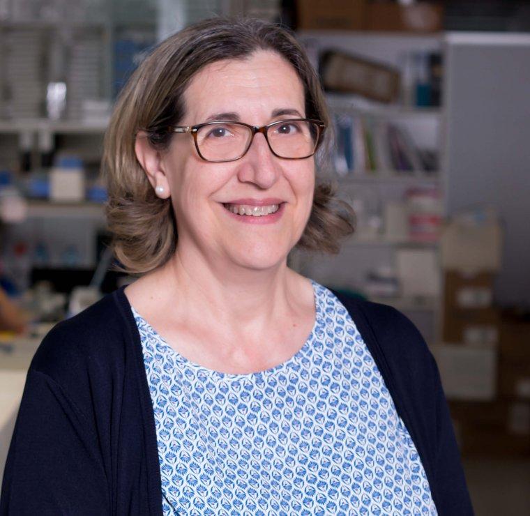 La investigadora Rosa Pérez