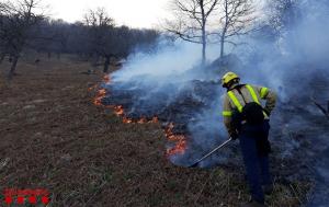 Pla general d'un bomber treballant per apagar un incendi forestal a Les