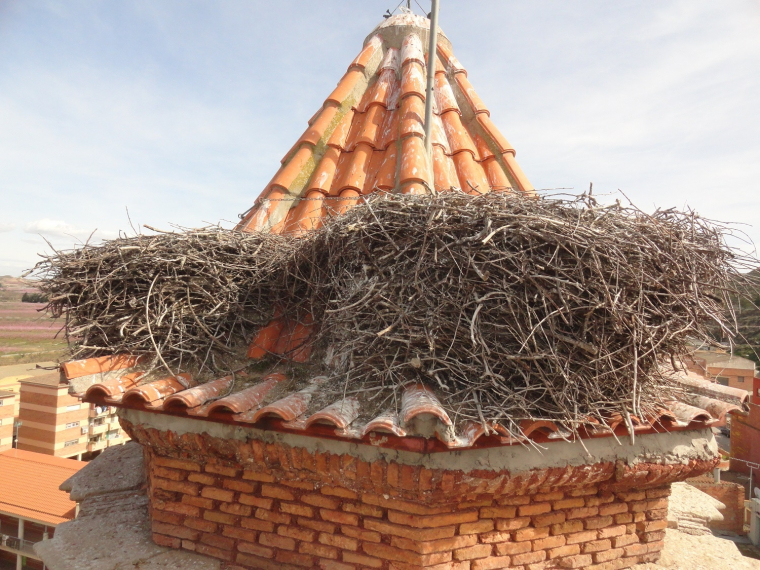 Niu de cigonya a l'església de la Granja d'Escarp