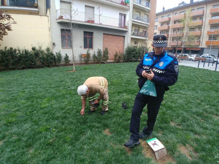 Tècnic de Medi Ambient de l'Ajuntament de la Seu d'Urgell