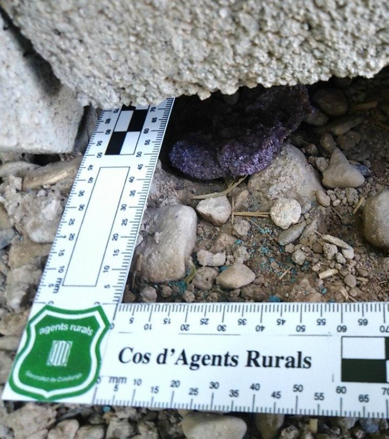 Imatge d'un dels esquers trobats