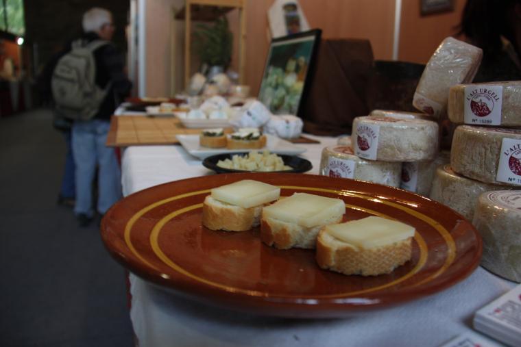 Pla de detall de diverses racions de formatge