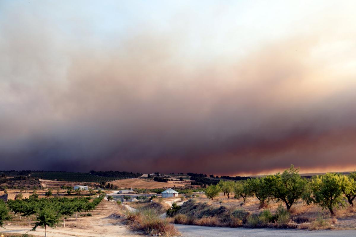 El fum de l'incendi de Ribera d'Ebre es podia veure des de Llardecans.