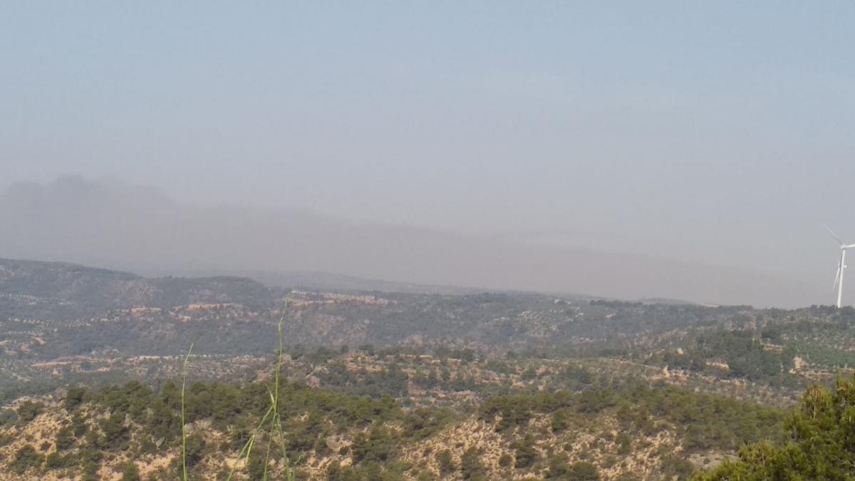 Imatge de l'incendi des del mirador de la Granadella
