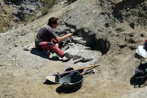 Imatge d'una de les campanyes d'excavació que s'han fet al jaciment del Molí del Baró