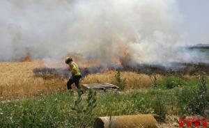 Lles flames han cremat un total de cinc hectàrees de cereal no collit.