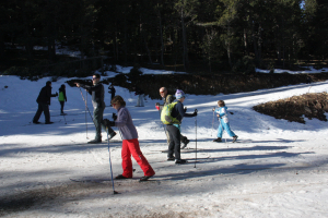 Pla general d'esquiadors en ple pont de desembre practicant esquí nòrdic