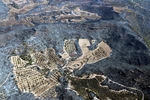 Vista aèria d'una zona agrícola i d'una construcció envoltades de zones cremade