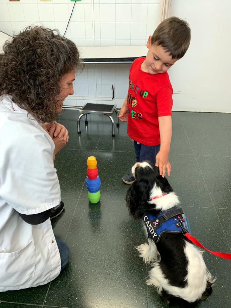 Pla sencer d'un infant, una sanitària i el gos de la teràpia assistida