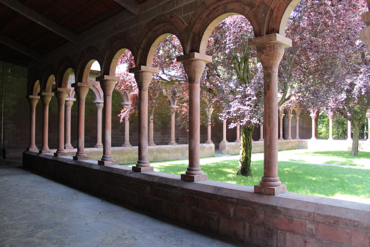 Imatge del claustre