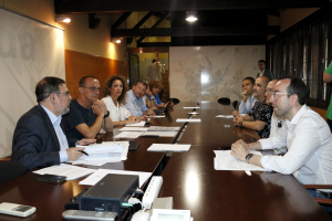Acte de constitució de la comissió de l'1-O de l'Ajuntament de Lleida