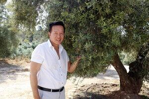 El Lam Chuen amb una de les oliveres a la finca de Bovera