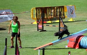 Una participant competint amb el seu gos a la Rialp Summer Agility