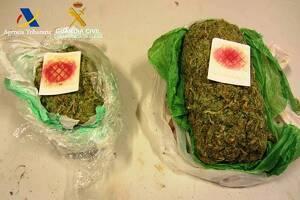 El paquet de marihuana comissat a l'aeroport del Prat