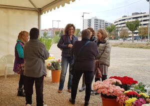 Imatge del Mercat de les Flors de Lleida