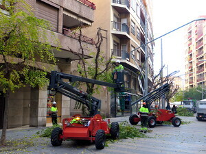 Pla mitjà on es pot veure l'esporga d'arbres per millorar la il·luminació de carrers i places a Lleida